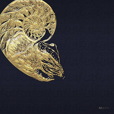 Golden Nautilus On Charcoal Black Poster by Serge Averbukh