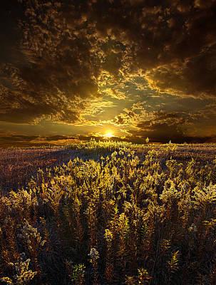 Golden Poster by Phil Koch