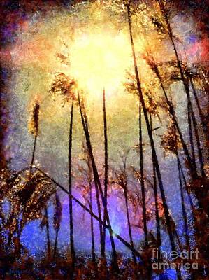 Golden Sun Rays On Beach Grass Poster by Janine Riley