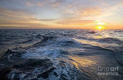 Golden Sunrise And Waves Poster