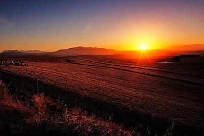 Golden Sunrise Over Farmland Poster