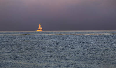 Golden Sunrise Sails By Denise Dube Poster