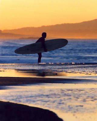 Golden Surfer Poster