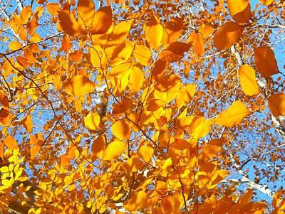 Golden Tree B Poster