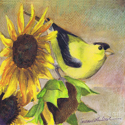 Poster featuring the painting Goldfinch And Sunflowers by Susan Herbst