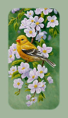 Goldfinch Iphone Case V1 Poster by Crista Forest