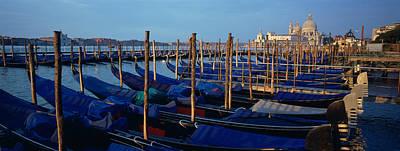 Gondolas Moored At A Harbor, Santa Poster