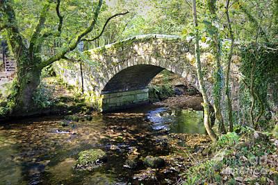 Goodameavy Bridge Dartmoor Poster by Donald Davis