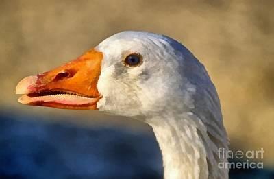 Goose Poster by George Atsametakis