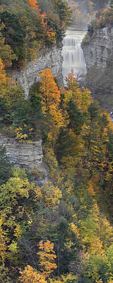 Gorge In Autumn Light Poster