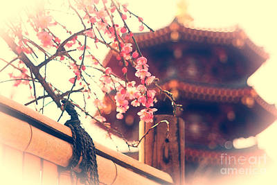 Gorgeous Pagoda And Plum Blossoms With Bamboo Fence Poster