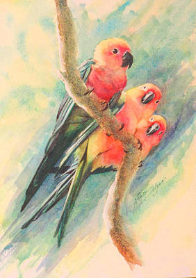 Gossiping Conures Poster
