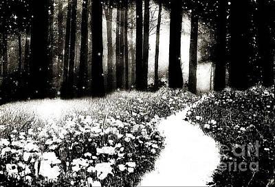 Gothic Dark Black White Surreal Woodlands Path Poster