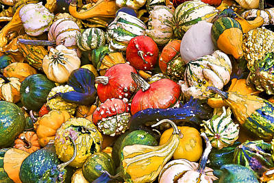 Gourds And Pumpkins At The Farmers Market Poster