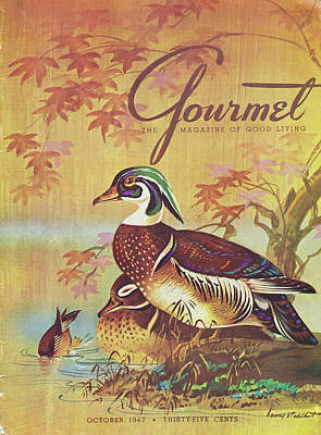 Gourmet Cover Of Wood Ducks Poster