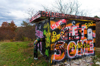 Graffiti Covered Building In Field Poster