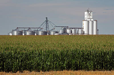 Grain Elevator And Maize Field Poster