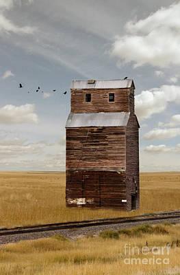 Grain Elevator By Railroad Tracks Poster