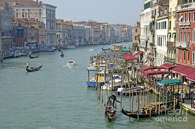 Grand Canal Viewed From Rialto Bridge Poster by Sami Sarkis