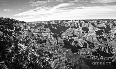 Grand Canyon December Glory In Black And White Poster by Lee Craig