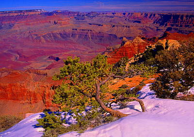 Grand Canyon In Winter Poster
