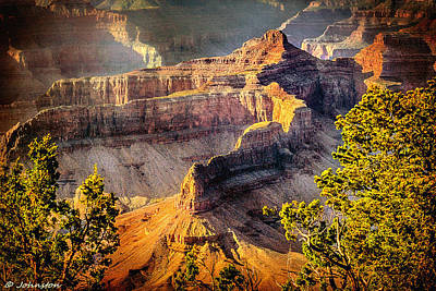 Grand Canyon National Park Poster by Bob and Nadine Johnston