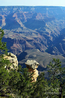 Grand Canyon National Park South Rim Cap Rock Formation Vertical Poster by Shawn O'Brien