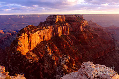 Grand Canyon North Rim Poster