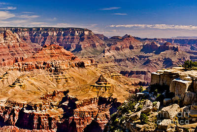 Grand Canyon Painting Poster by Bob and Nadine Johnston
