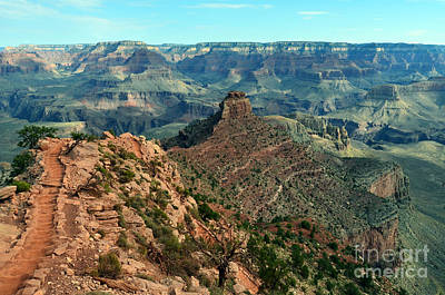 Grand Canyon South Kaibab Trail And Oneill Butte Poster