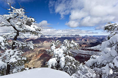 Grand Canyon Winter - 1 Poster