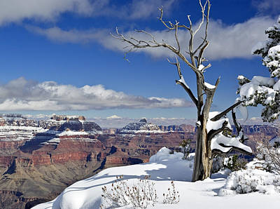 Grand Canyon Winter -2 Poster