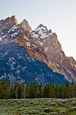 Grand Teton From Jenny Lake Poster by Adam Pender