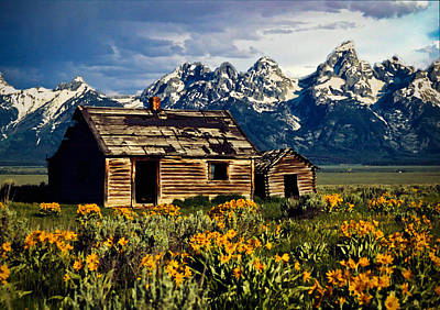 Poster featuring the photograph Grand Tetons Cabin by John Haldane