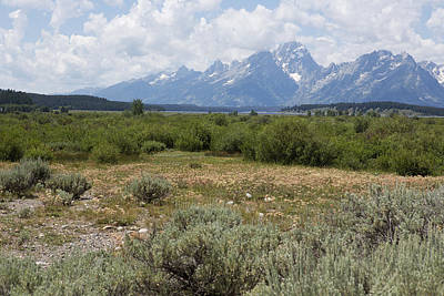 Poster featuring the photograph Grand Tetons From Willow Flats by Belinda Greb