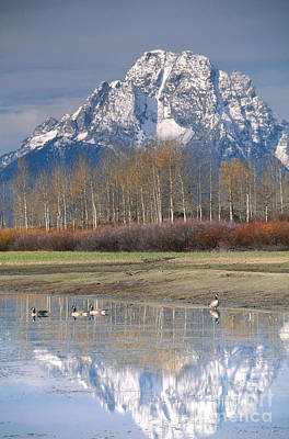 Grand Tetons National Park Poster by Art Wolfe