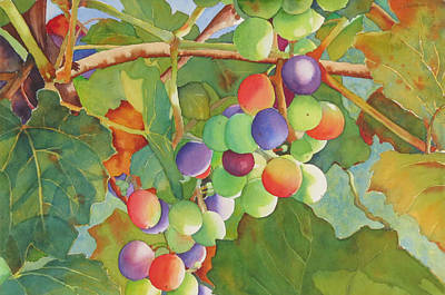 Grape Fusion Poster by Judy Mercer