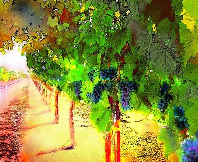 Grape Vines Poster by Cindy Edwards
