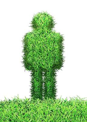 Grass Human Figure Poster by Victor Habbick Visions