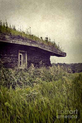 Grass Roof On Cottage Poster