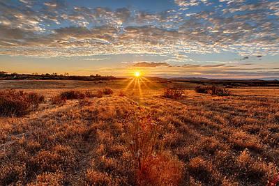 Grassland Sunset Poster