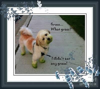 Grassy Puppy Poster