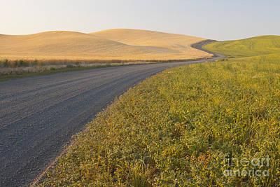 Gravel Road Through Farming Region, Wa Poster by John Shaw