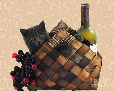 Gray Kitten Wine Basket And Grapes Poster by Robyn Saunders