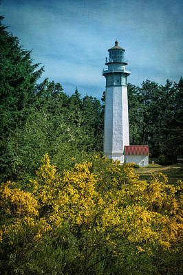 Grays Harbor Lighthouse Poster by Joan Carroll