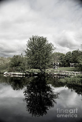 Grays Mill Pond Poster by Angela DeFrias