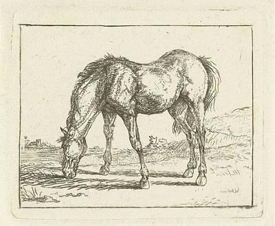 Grazing Horse. Jan Dasveldt, 1780 - 1855 Poster