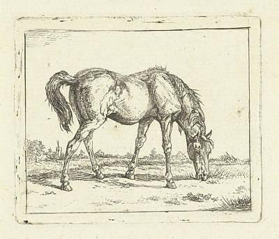 Grazing Horse Right, Jan Dasveldt Poster