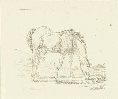 Grazing Horse Right, Print Maker Jan Dasveldt Poster