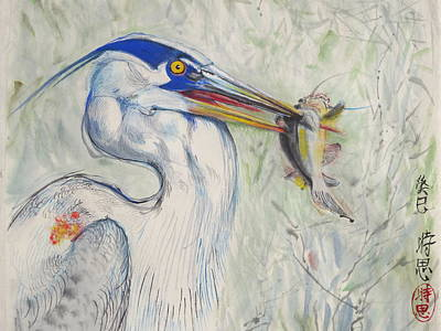 Great Blue Heron And Fish Poster by Alejandro  Angio